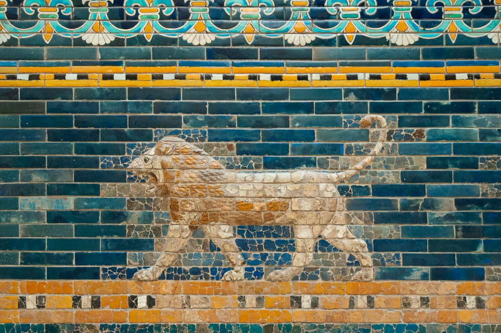 lion and lion wall art
