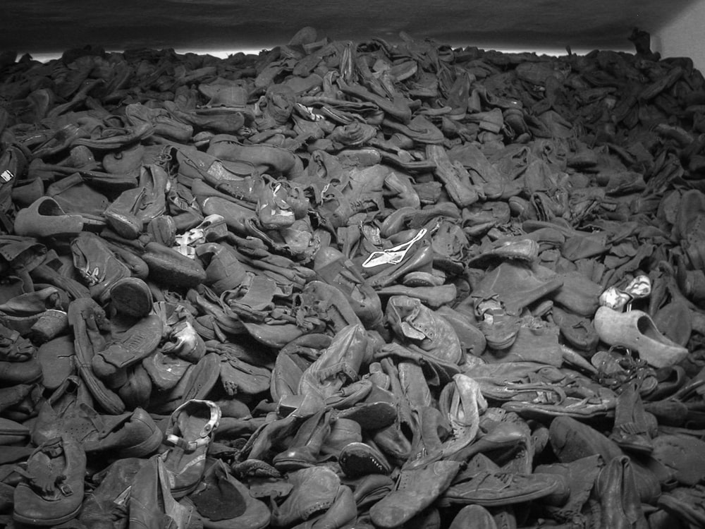 grayscale photo of dried leaves on the ground