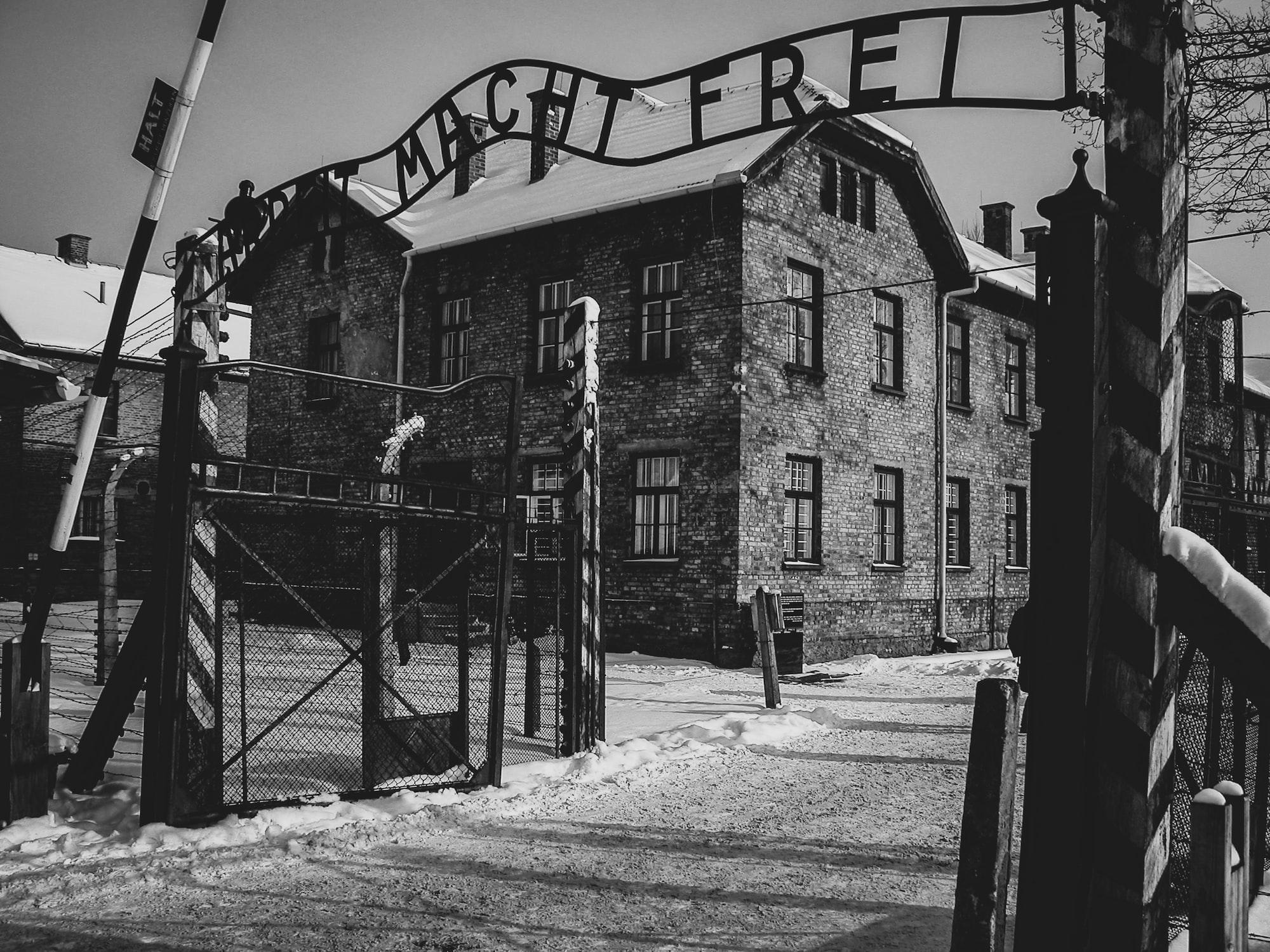 Oświęcim. Wyjątkowy dar trafił do zbiorów Muzeum Auschwitz (FOTO)