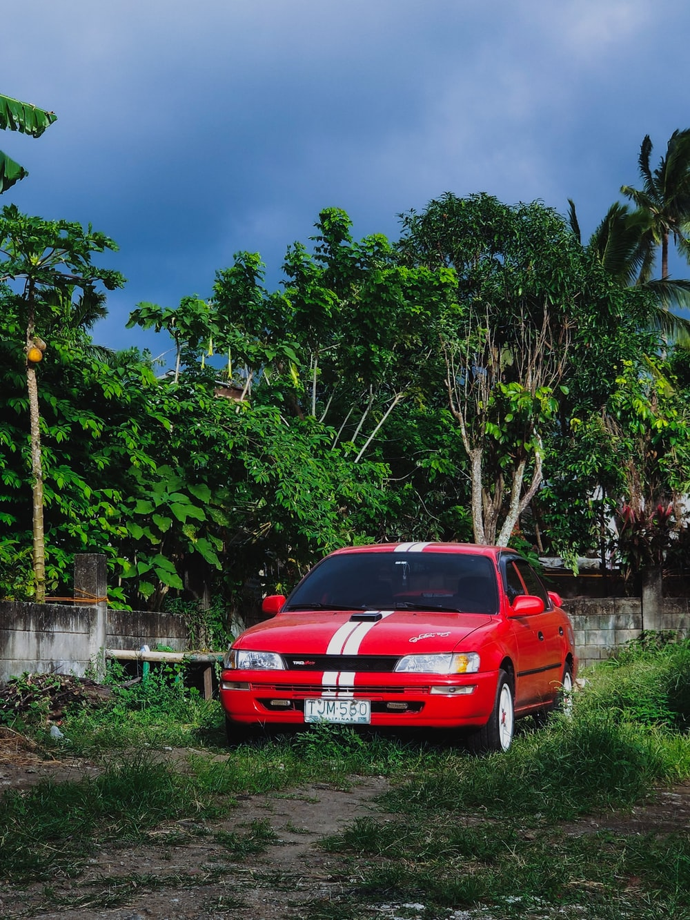 red car parked near green trees during daytime