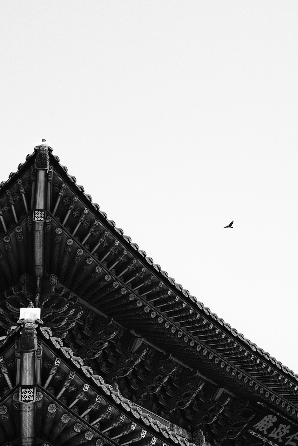 grayscale photo of birds flying over the building