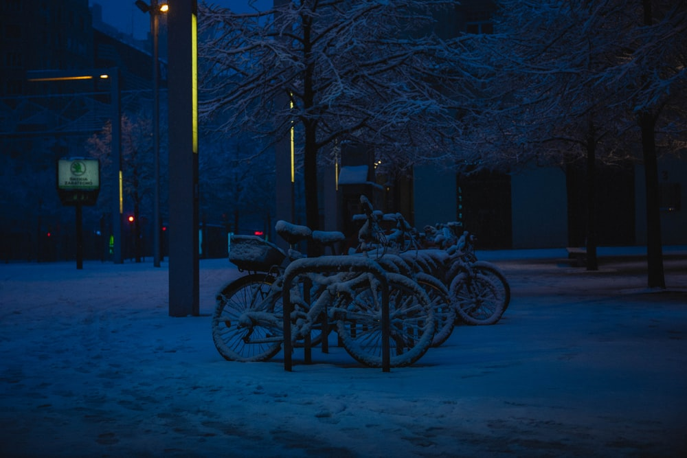 black bicycle parked beside bare tree during night time