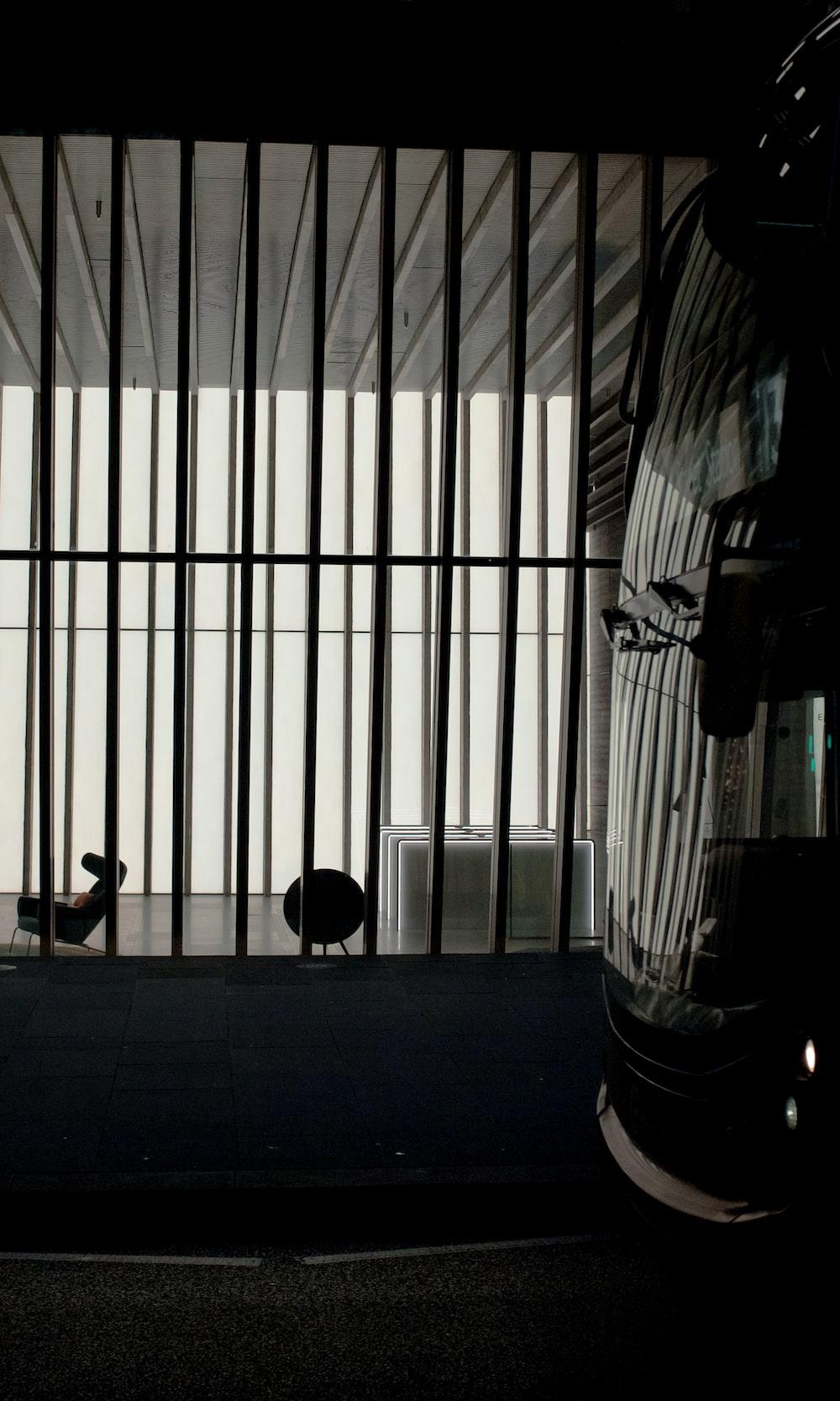 black metal pet cage near white window blinds