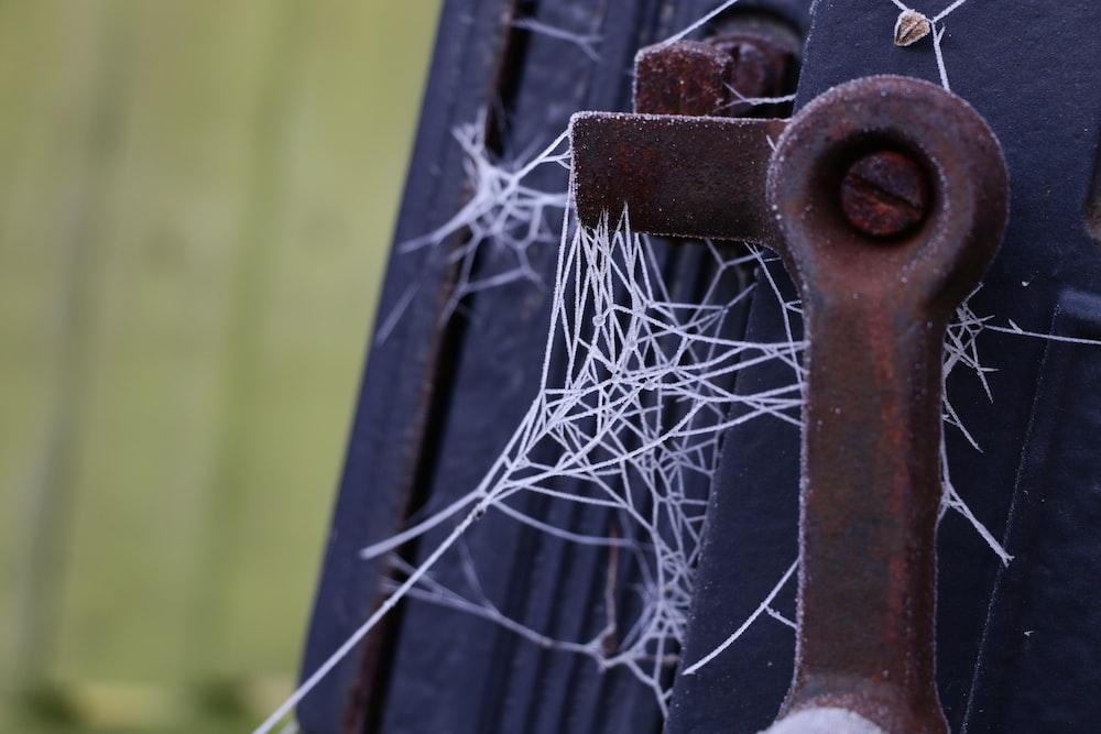 spider web on black wooden fence during daytime