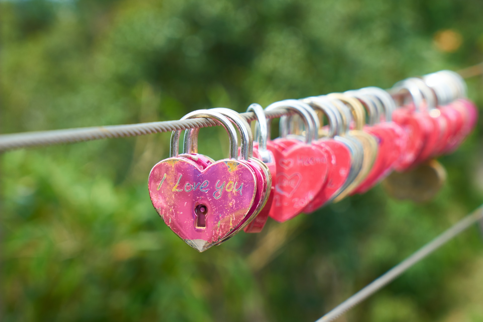 red and gold padlock on gray metal wire