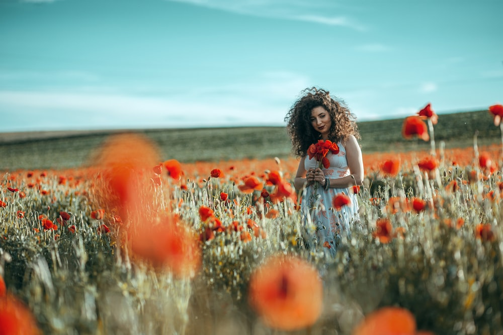 girl in white shirt sitting on red flower field during daytime