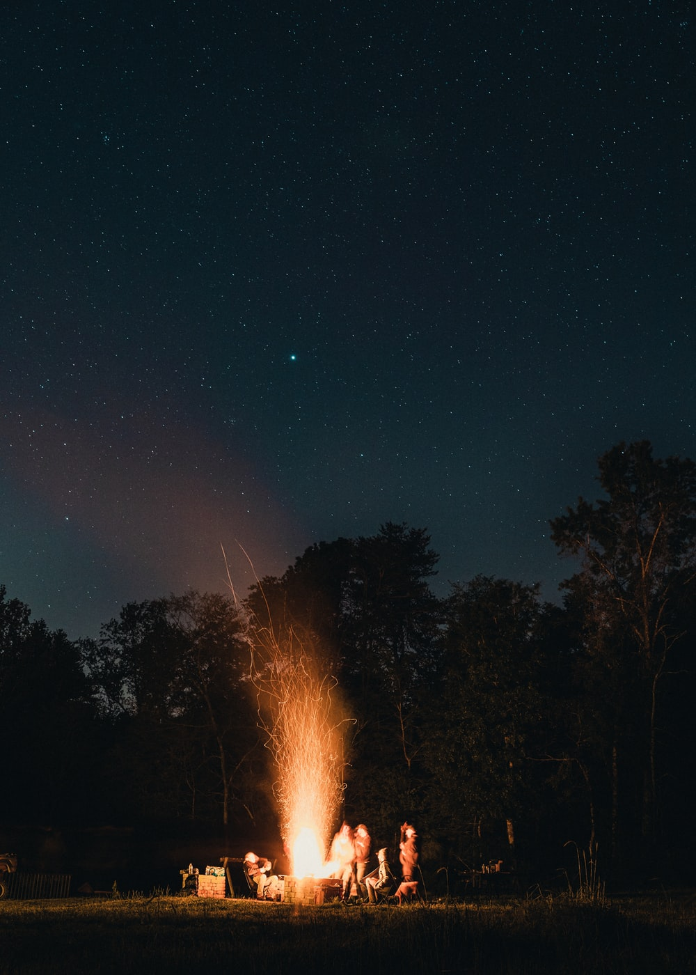 bonfire near trees during night time