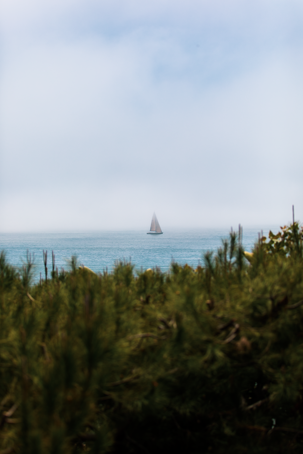 white sailboat on sea under white sky during daytime
