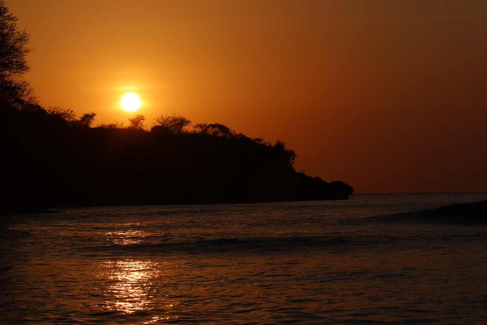 silhouette of trees on island during sunset
