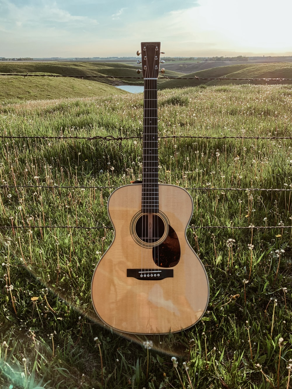 brown acoustic guitar on green grass field during daytime