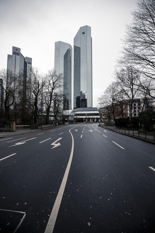 black asphalt road between bare trees during daytime