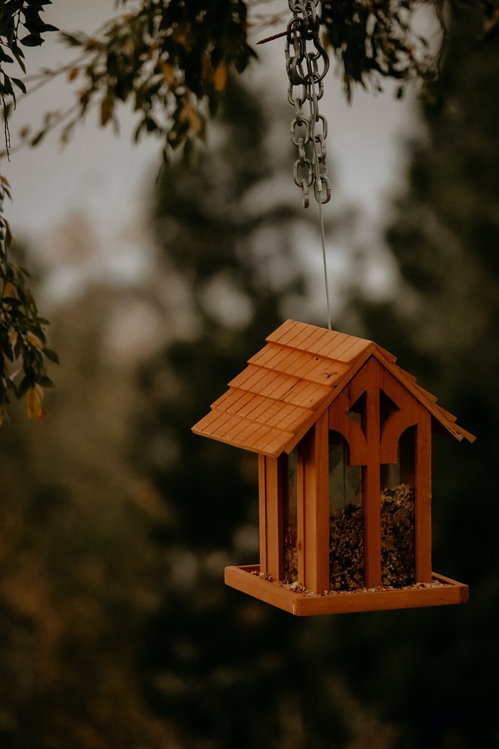 brown wooden bird house hanging on brown wooden tree