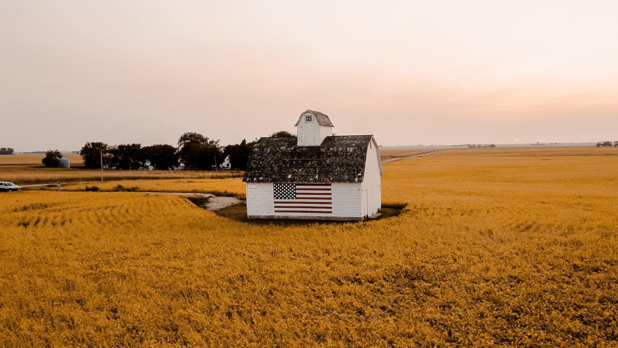 The Strange Case of Iowa: Debating Democracy