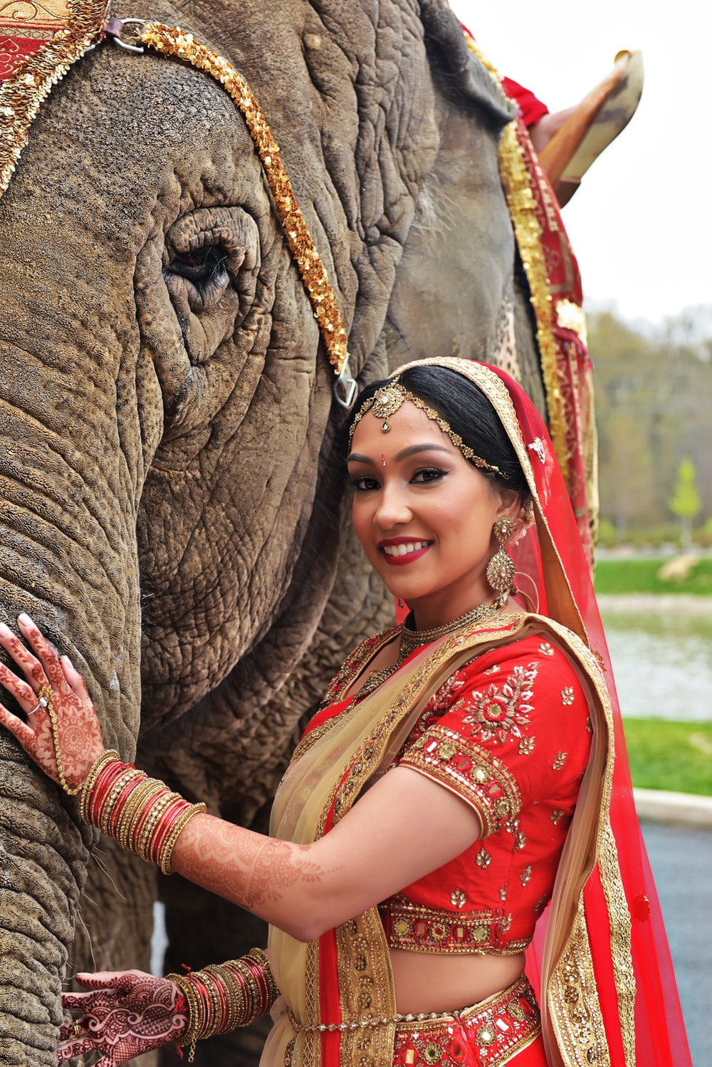 woman in red and brown floral dress hugging elephant