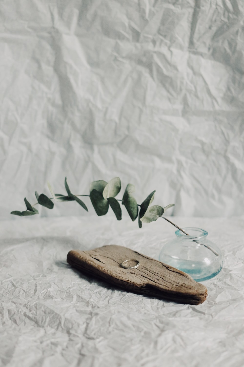 green leaves on blue glass bowl