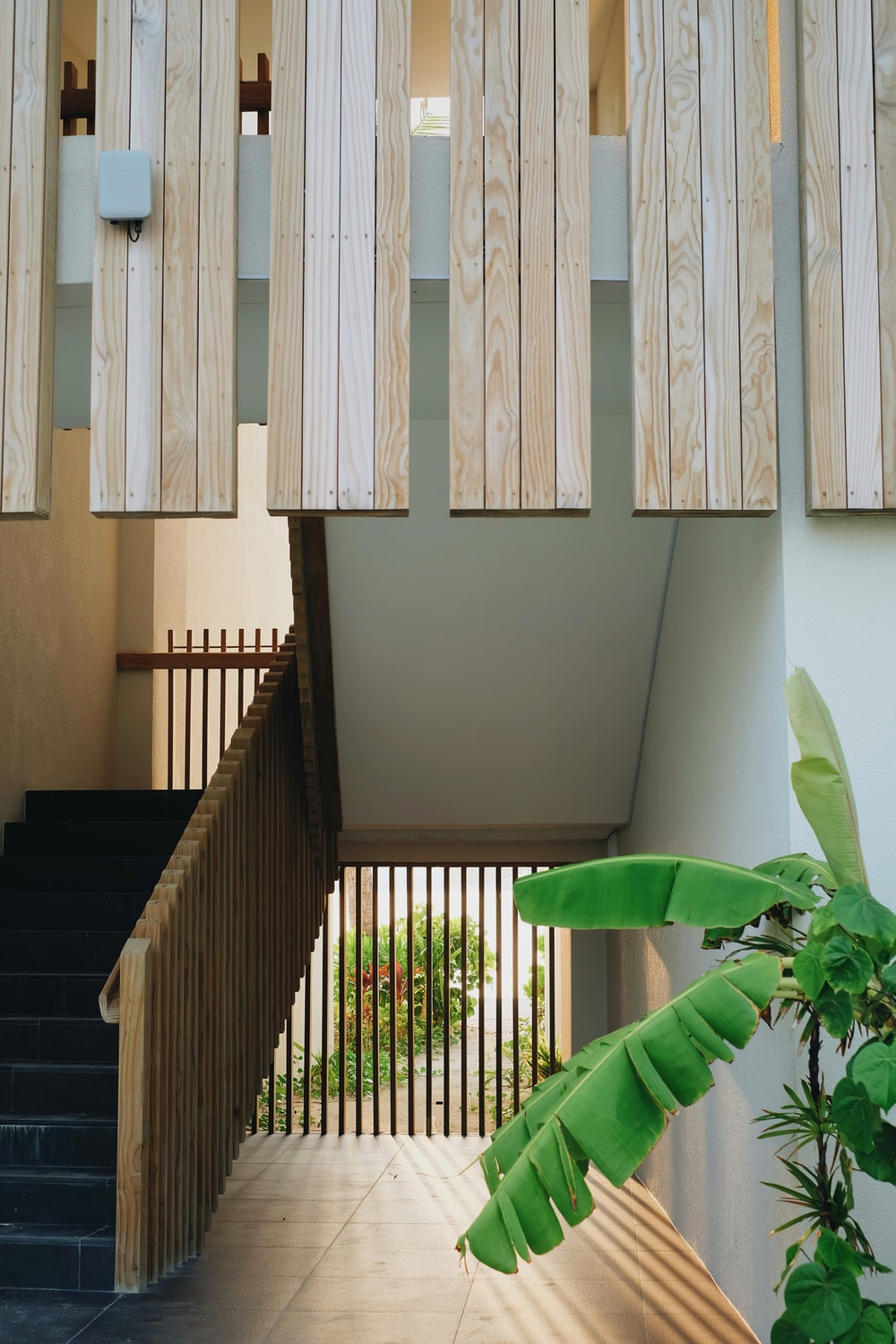 green plant near brown wooden staircase