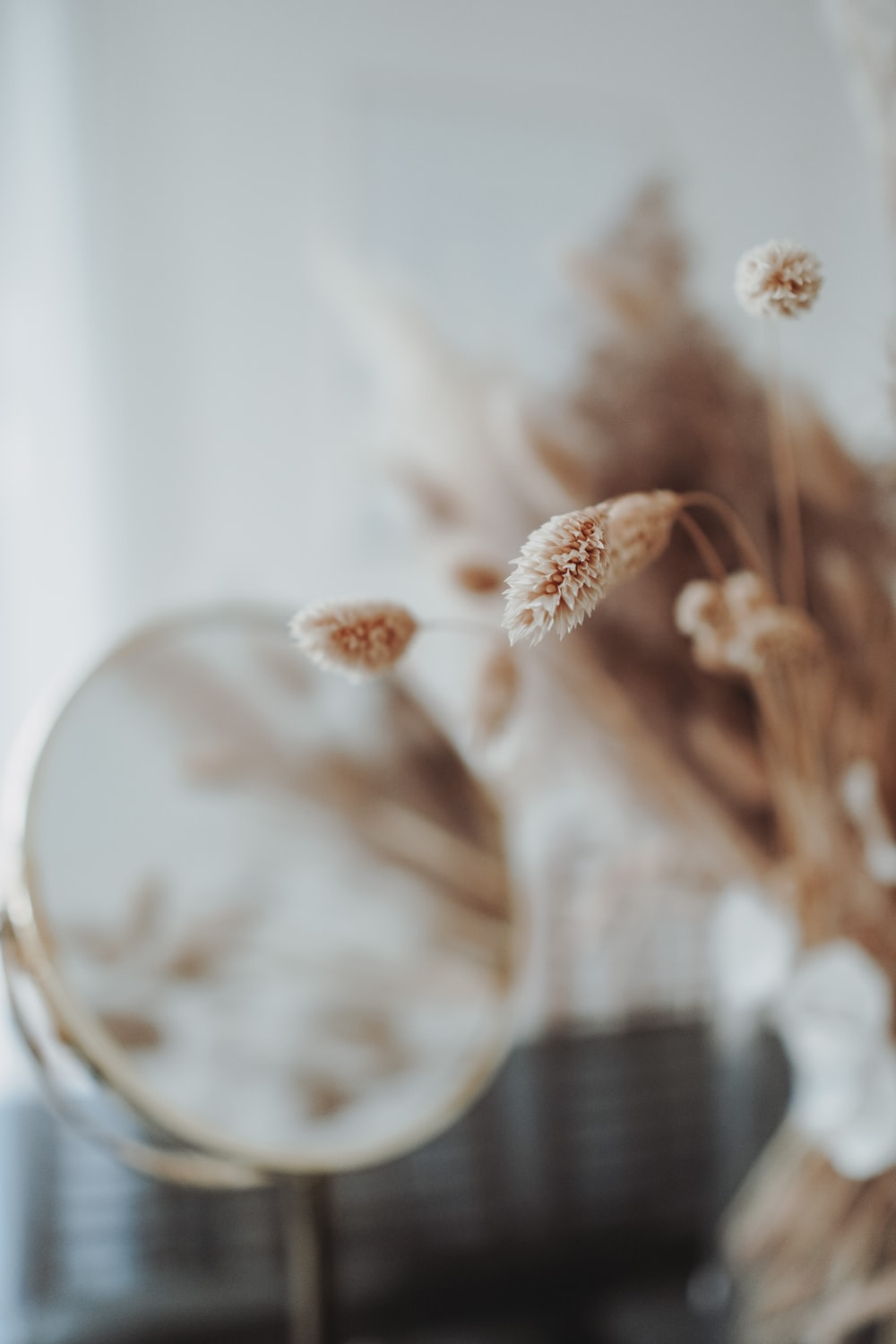 white and brown flower in clear glass vase
