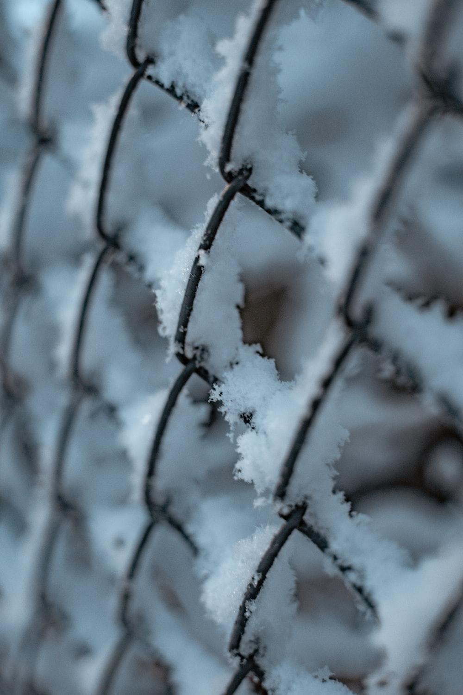 gray metal fence during daytime