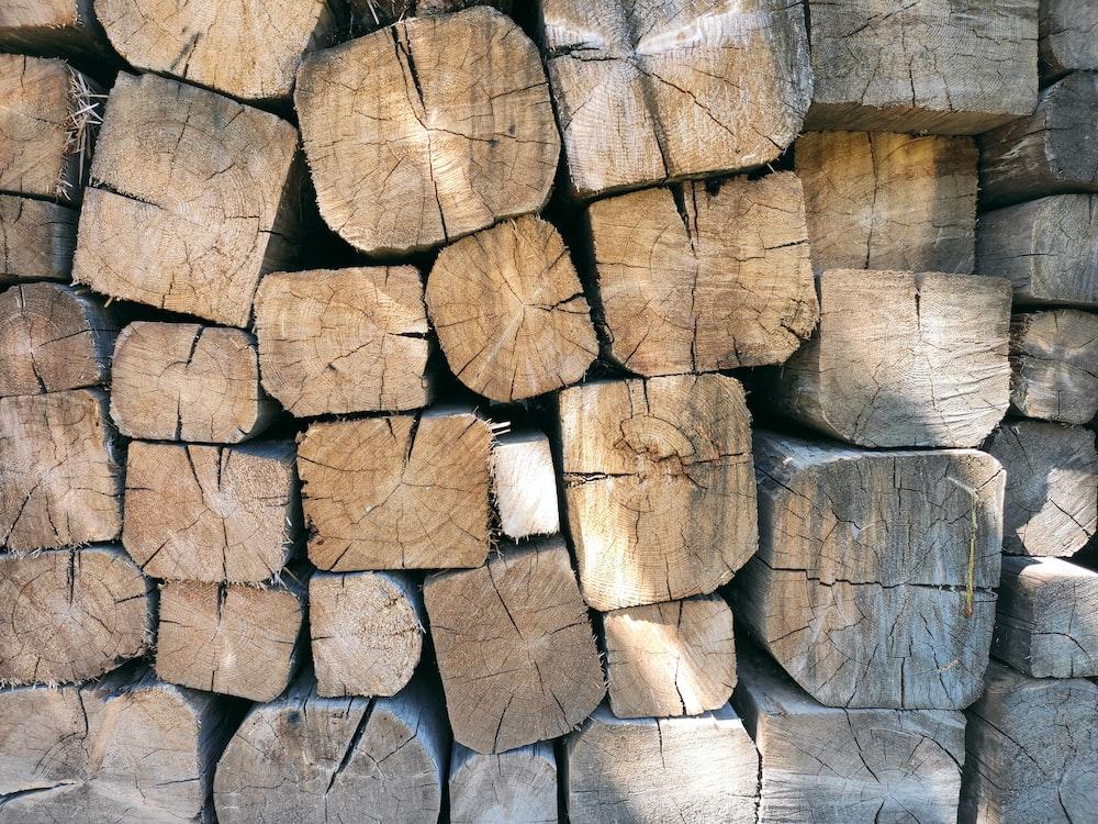 brown wooden logs during daytime