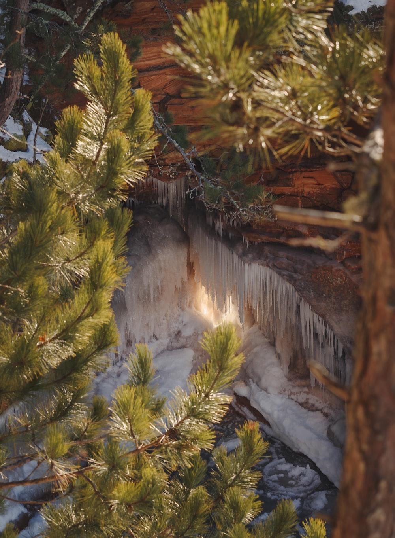 green pine tree near waterfalls during daytime