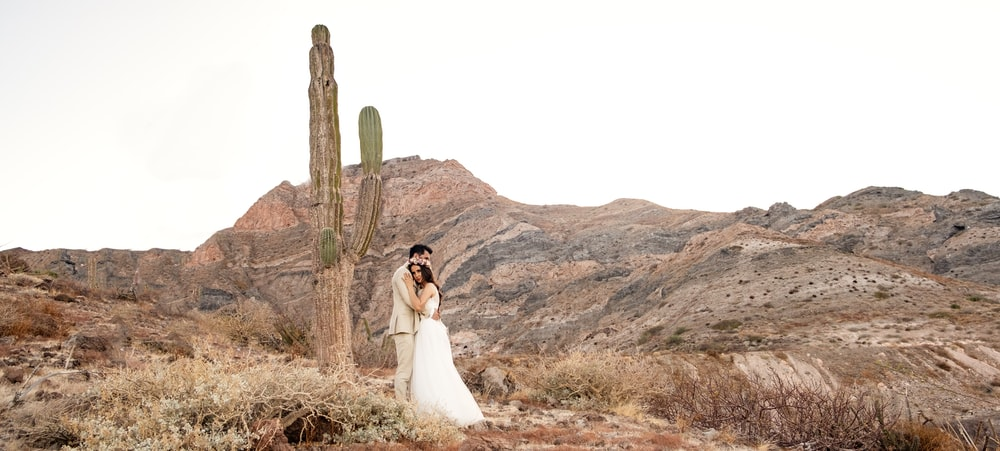 woman in white wedding gown standing beside brown tree during daytime