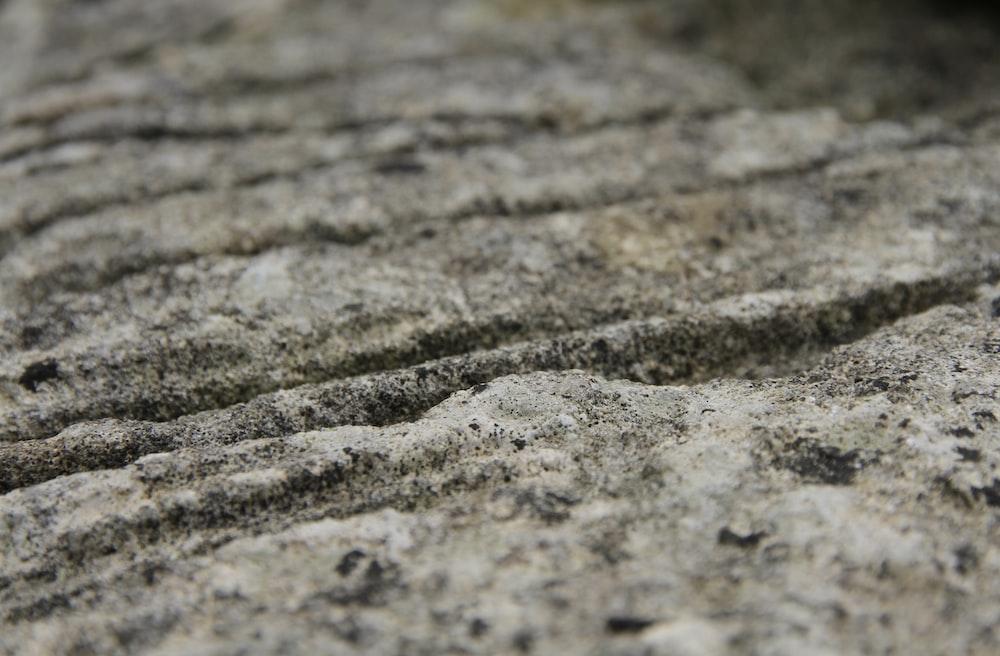 brown and black concrete pavement