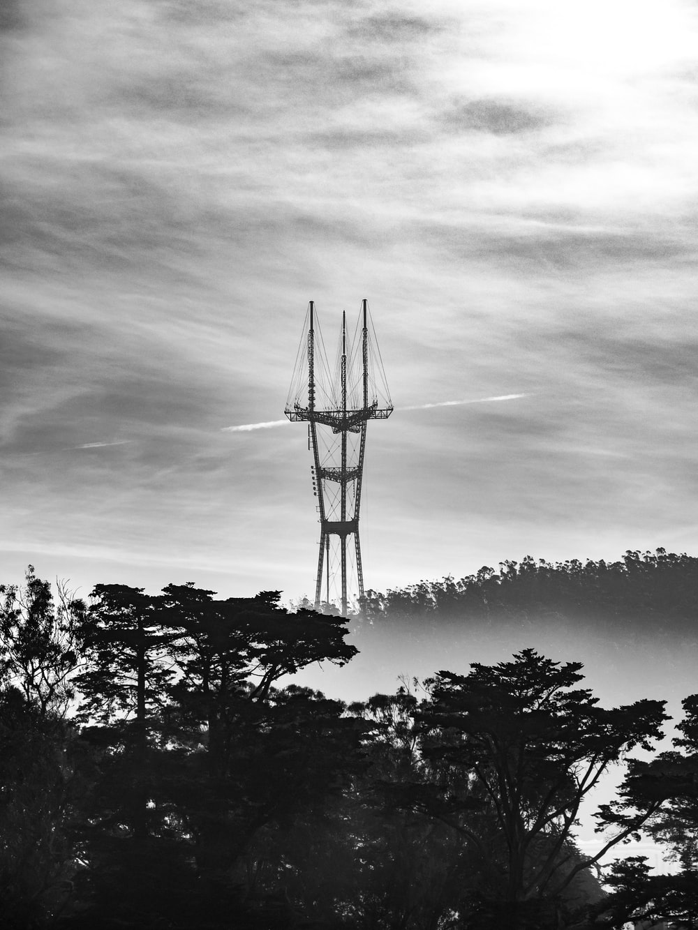 grayscale photo of trees and windmill