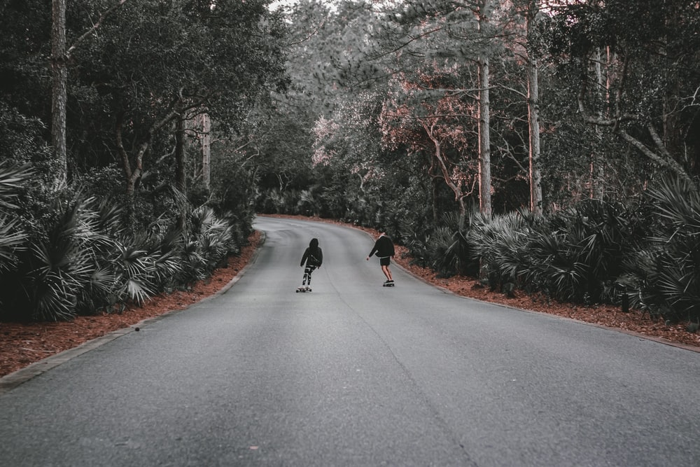black dog on gray asphalt road during daytime