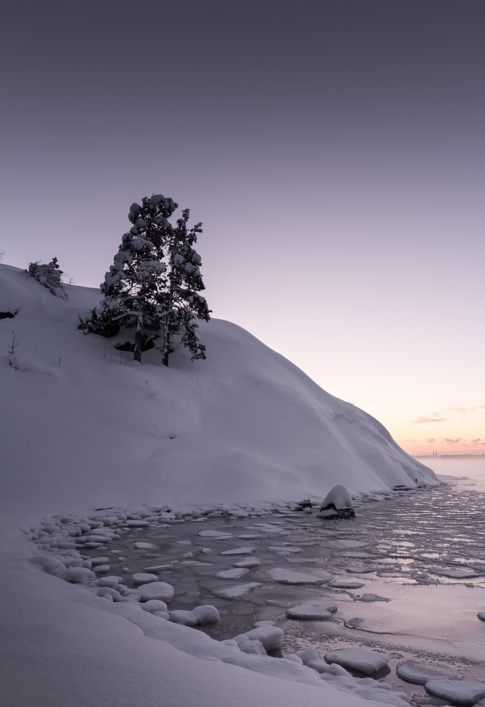 green tree on white snow covered mountain during daytime