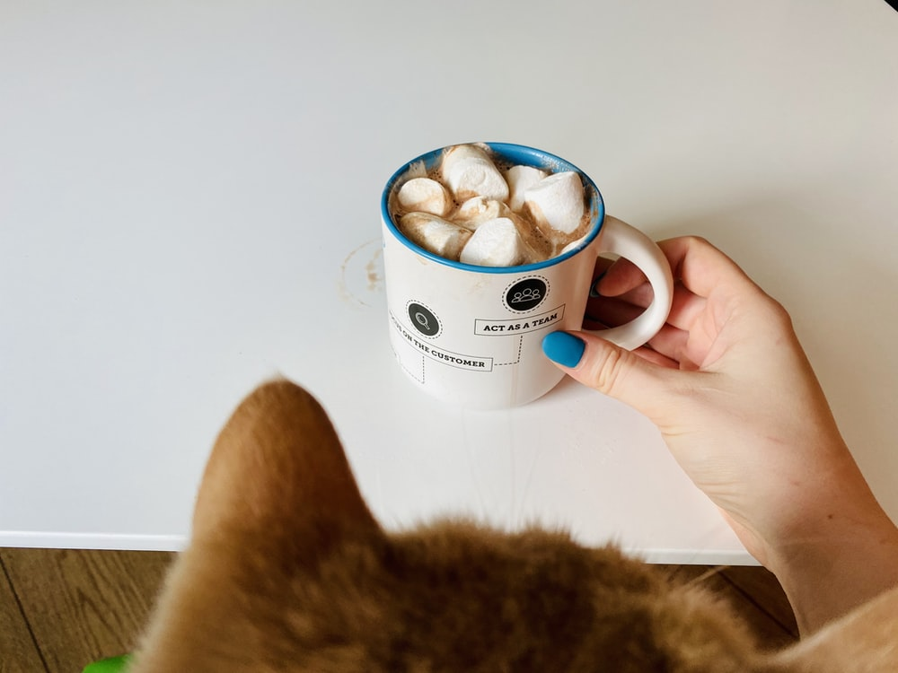 person holding white ceramic mug with brown and white dog