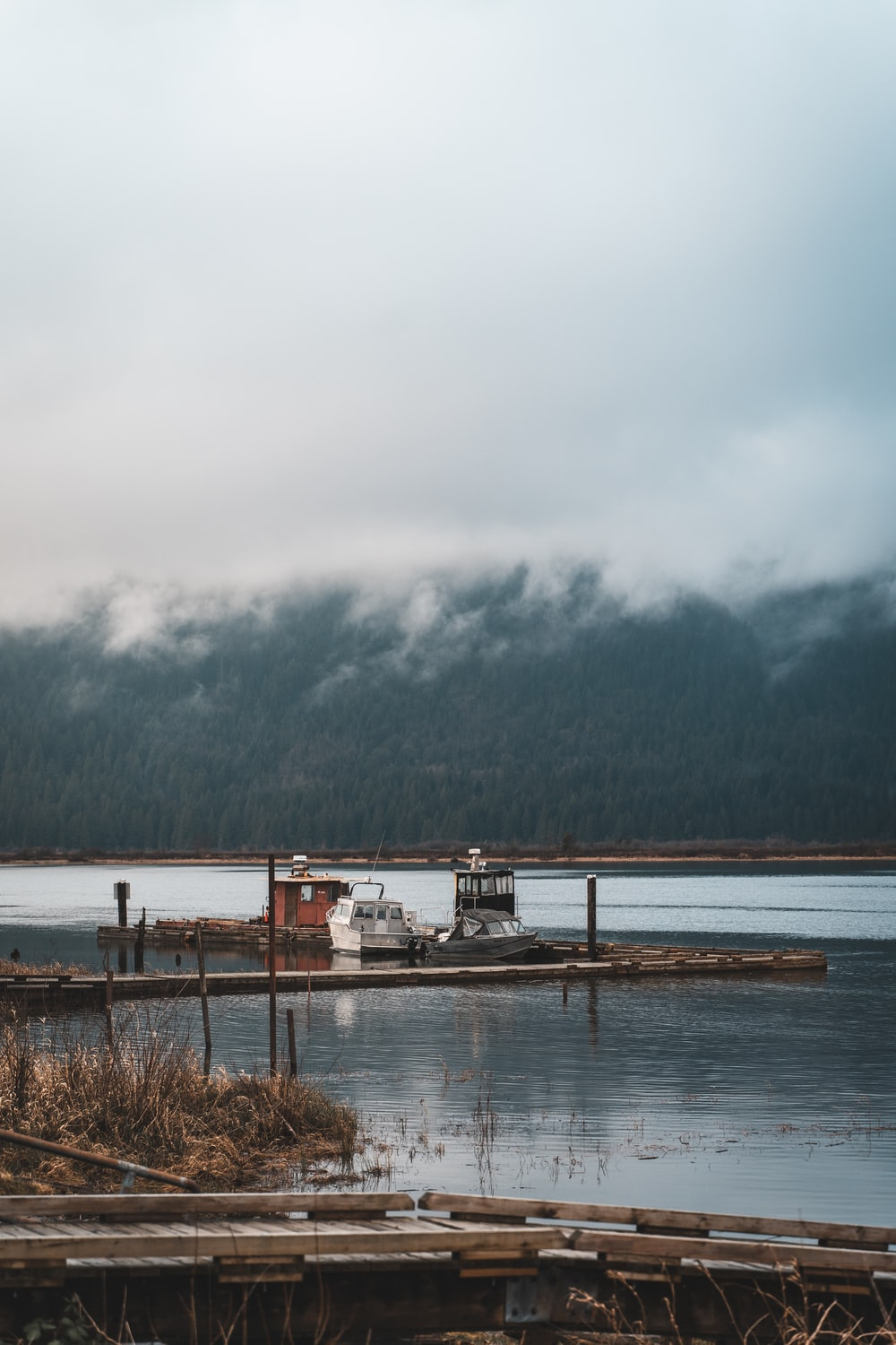 white and brown wooden dock on lake during daytime