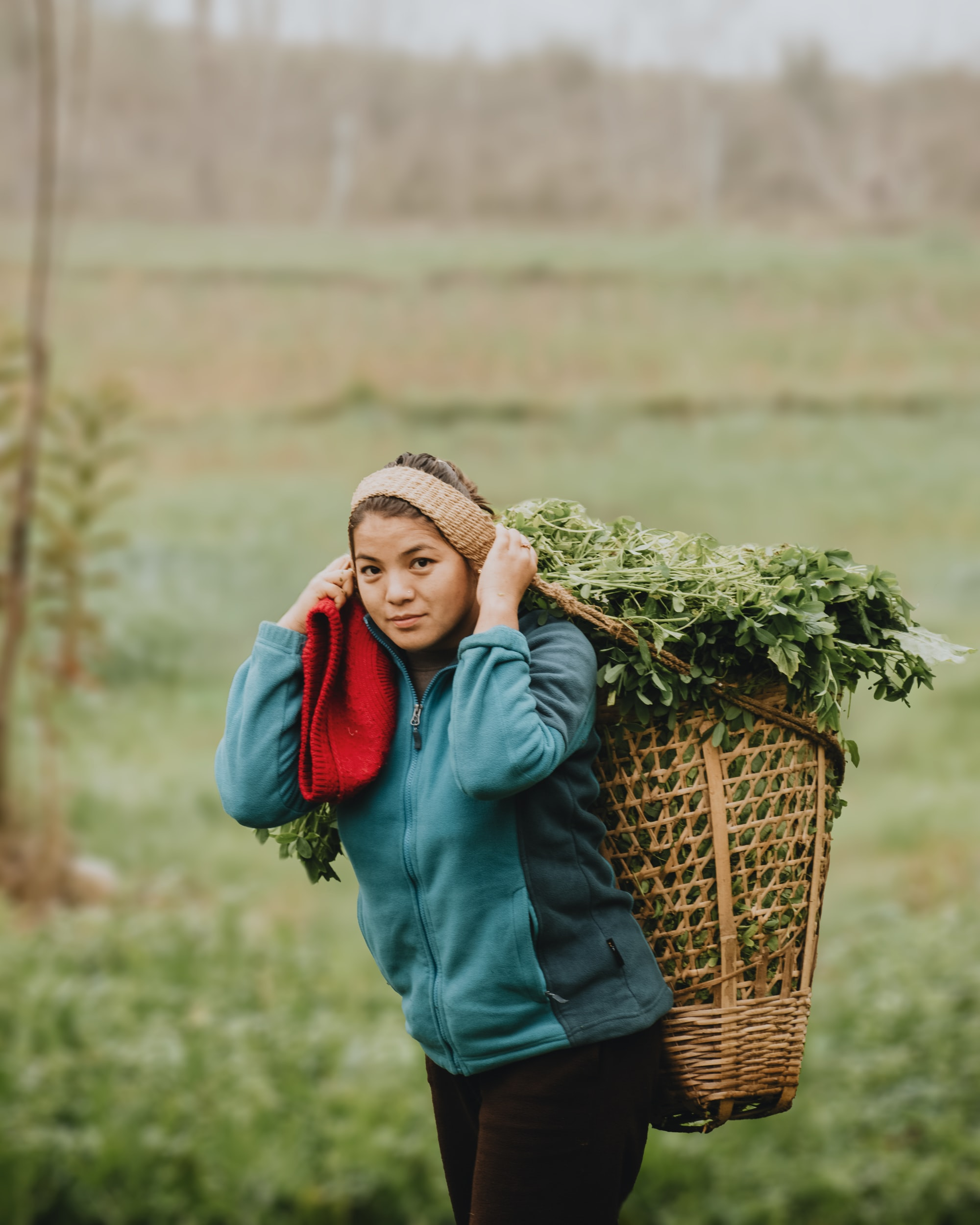 """This  girl is carrying """"doko"""". Doko is nepalese bag made form bamboo and used to carry fruits, vegetables and specially for carrying grass to the animals.Doko is carried by """"namlo"""" which is made of rope."""
