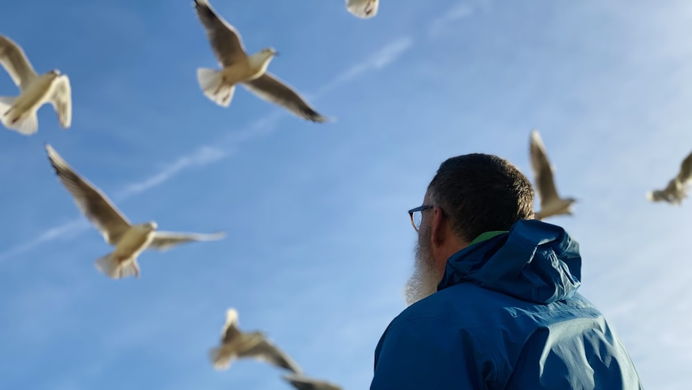 man in blue jacket looking at white birds