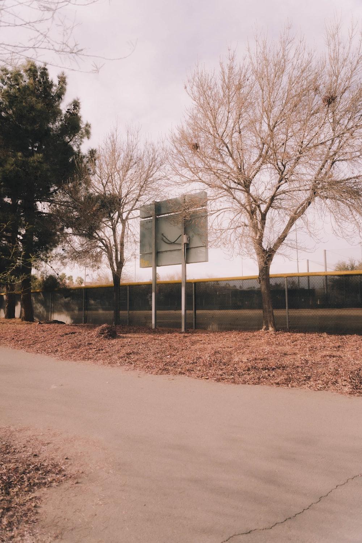 white basketball hoop near bare trees during daytime