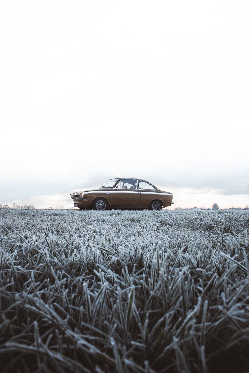 brown car on gray field during daytime