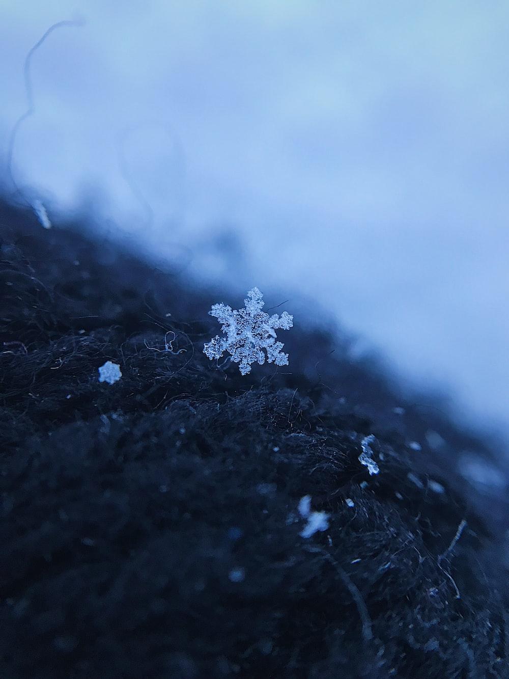 white snow flakes on black textile