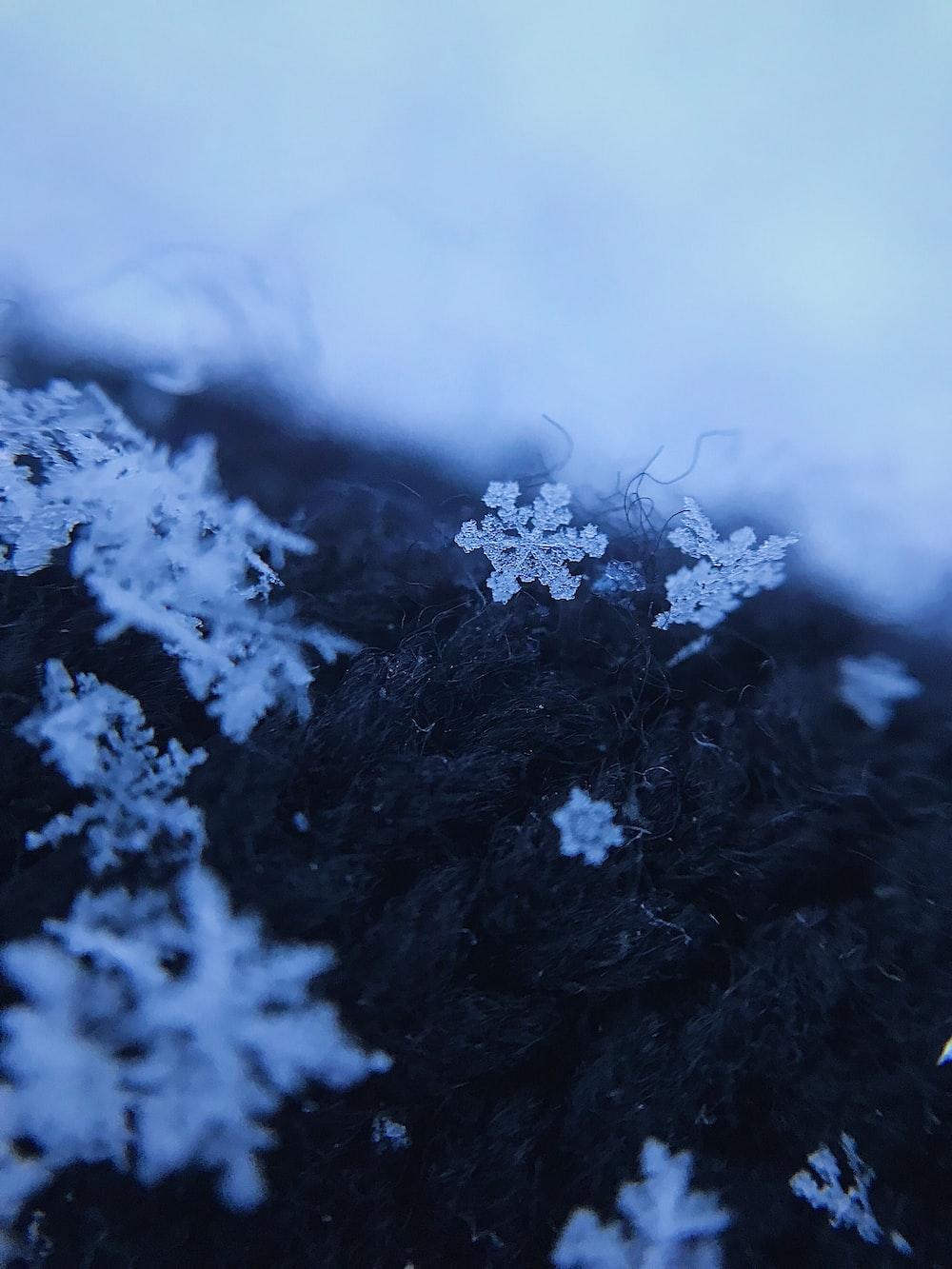 white snow on black and white textile