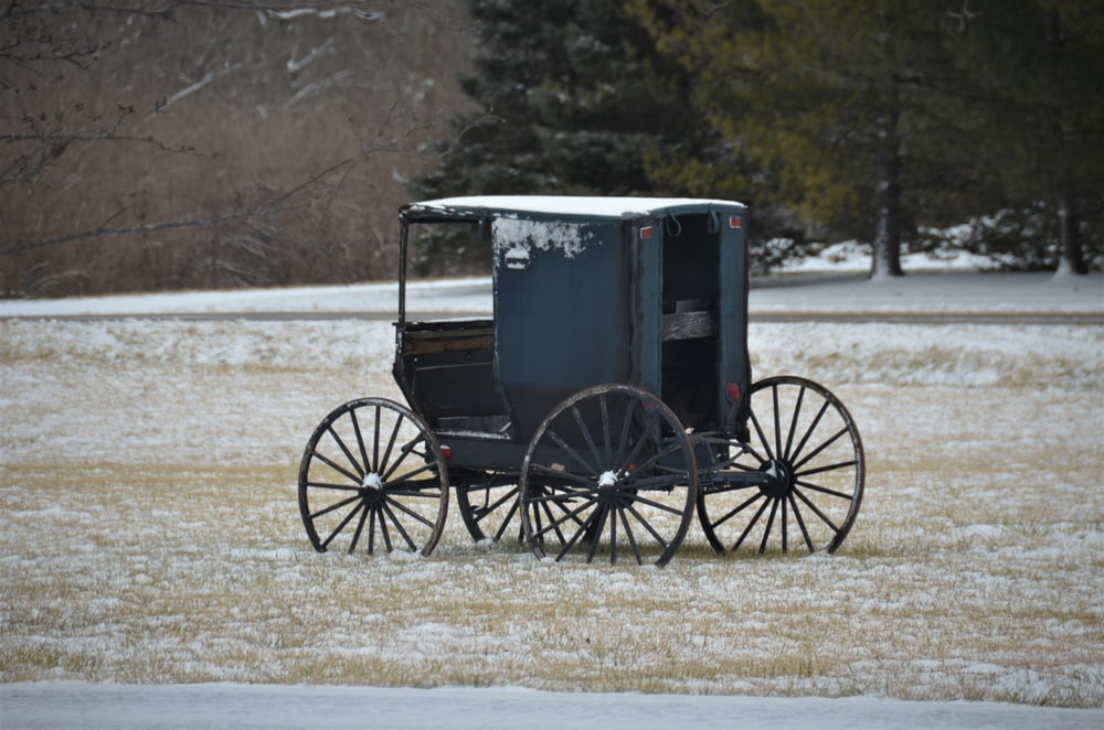 black wooden carriage on snow covered ground during daytime