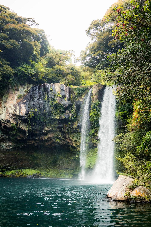 waterfalls between green trees during daytime
