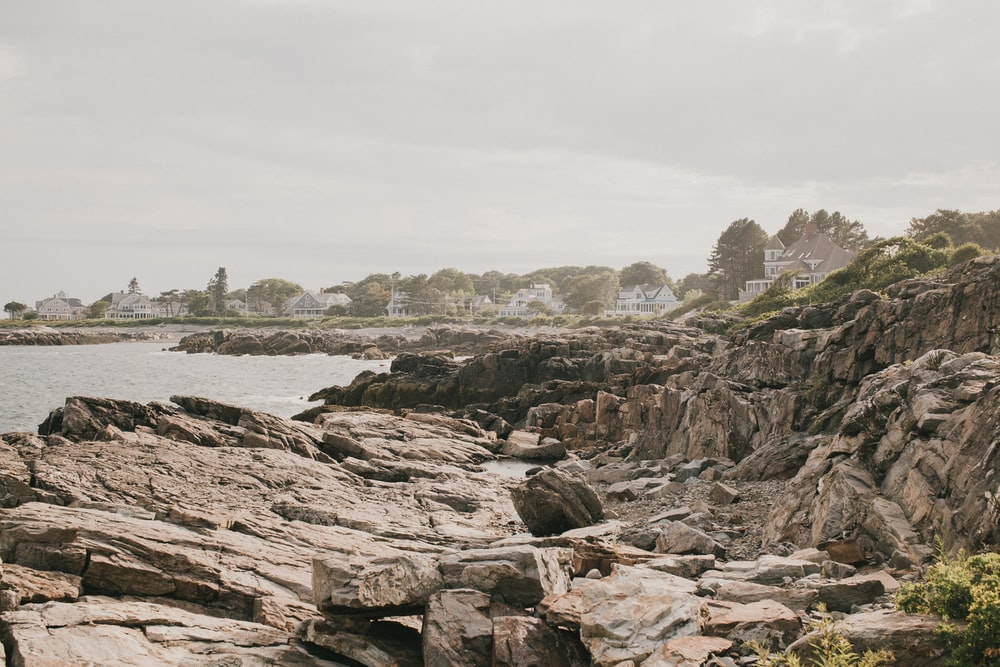 brown rocky shore near body of water during daytime