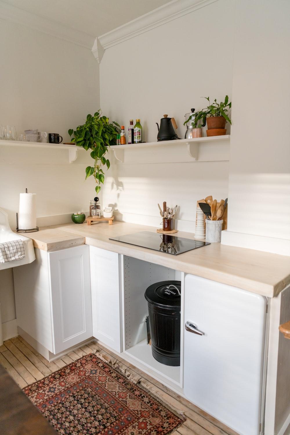 green plant on white wooden shelf