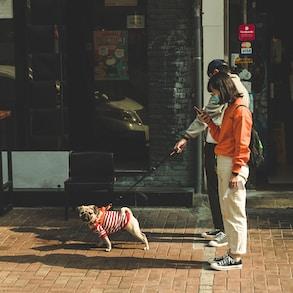 man in orange jacket and white pants holding black dog leash
