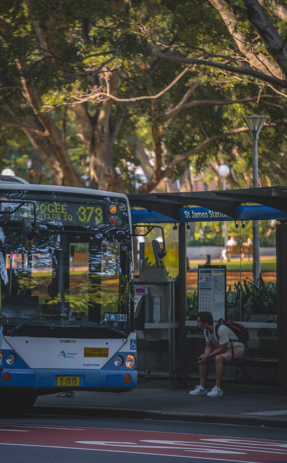 people sitting on bench near bus during daytime