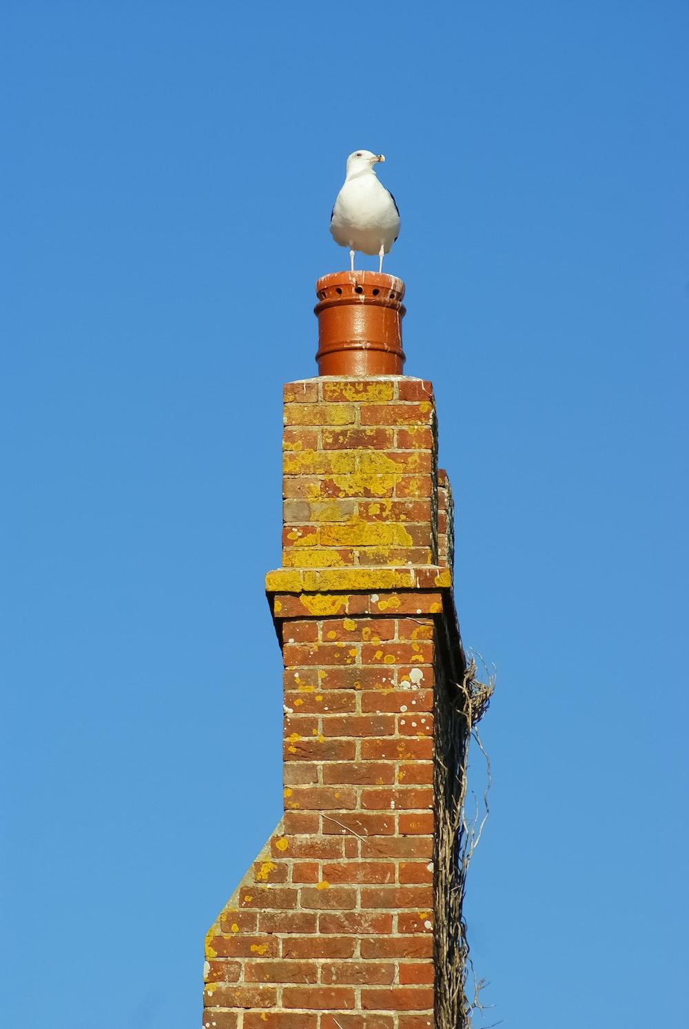 brown brick tower under blue sky during daytime