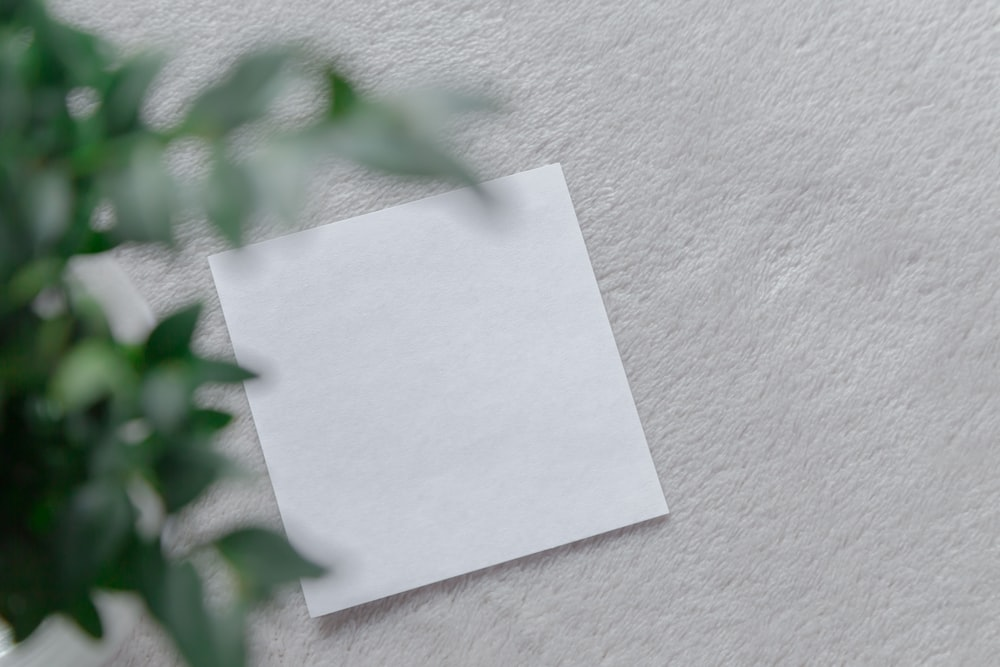 white printer paper on white surface