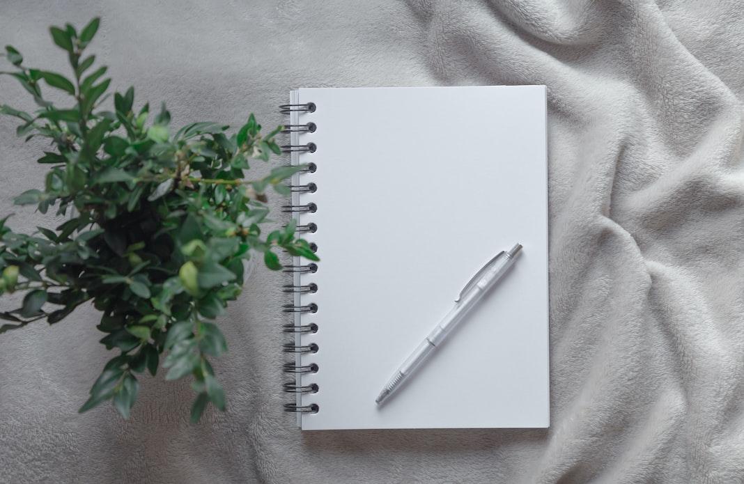 yazma hevesi