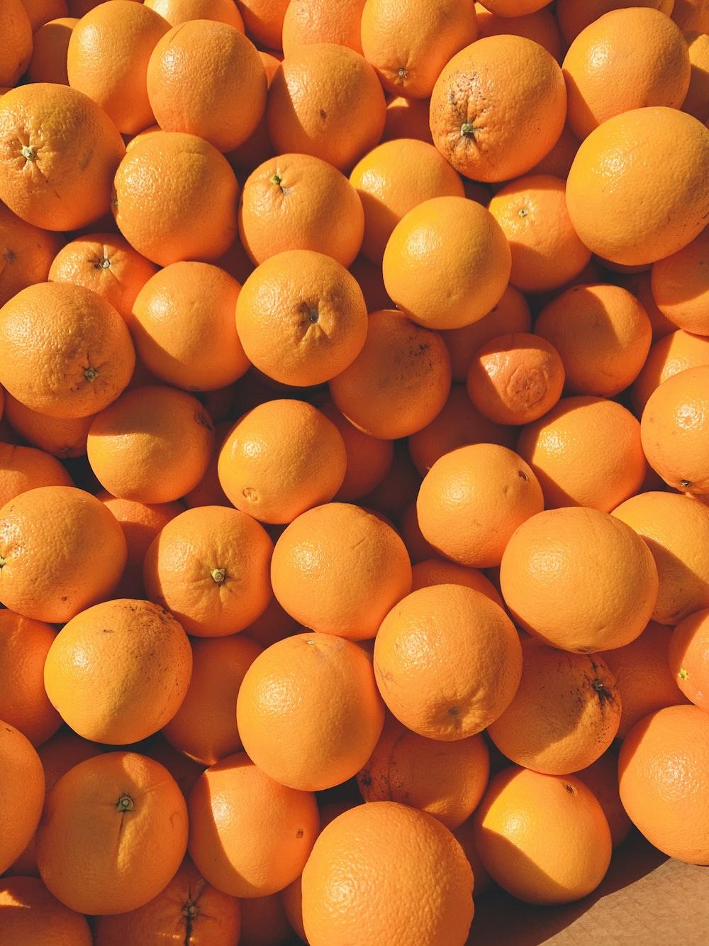 orange fruits on white ceramic plate