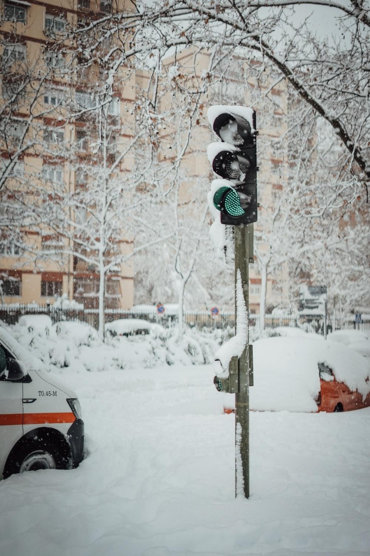 black traffic light on red light