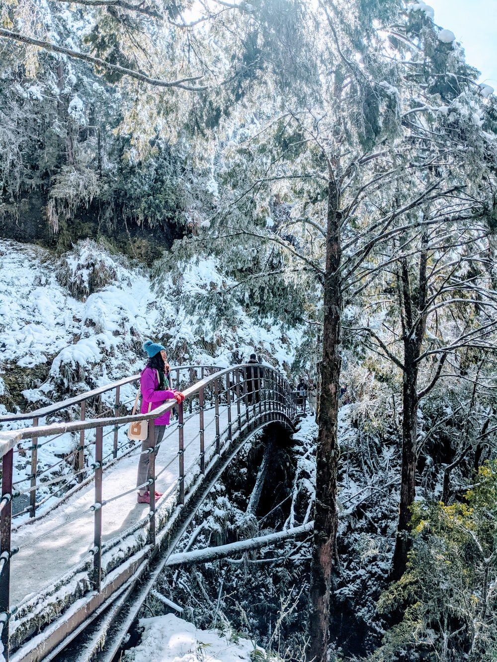 woman in blue jacket standing on bridge near trees during daytime