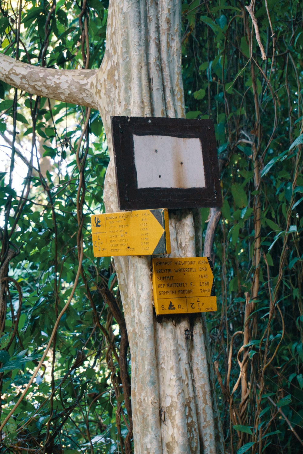 yellow and black wooden signage